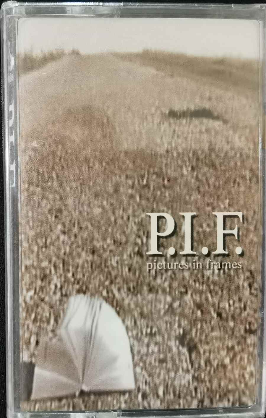 P.I.F. ‎– Pictures In Frames