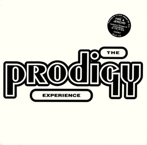 The Prodigy ‎– Experience