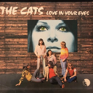 The Cats ‎– Love In Your Eyes